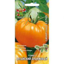 Томат Алтайский оранжевый Поиск