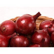 Лук-севок красный Роми 450 гр