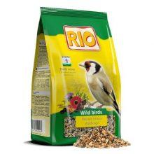 Повседневный корм для лесных певчих птиц